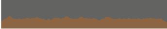 Nina Fischer Retina Logo